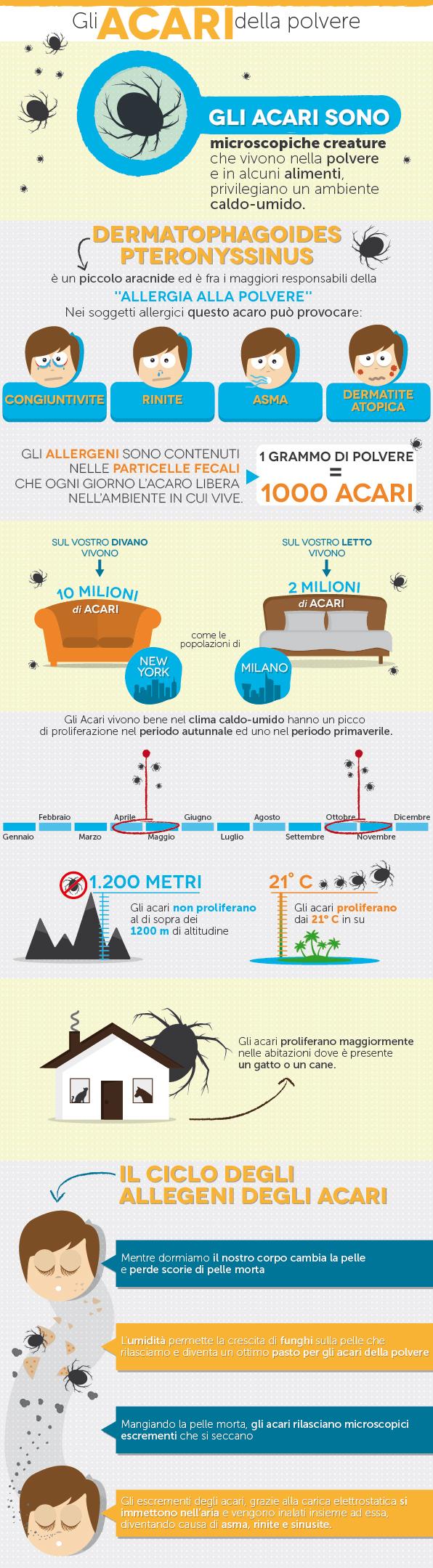21_Gli-acari-della-polvere-infografica-grafino