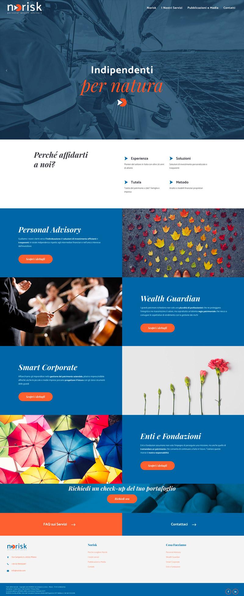 grafino-portfolio-website-norisk-home